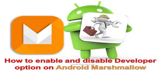 How to enable and disable Developer option on Android Marshmallow