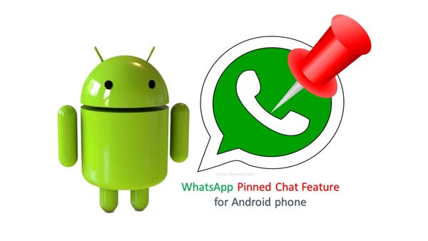 How to use WhatsApp Pinned Chat feature for Android phone