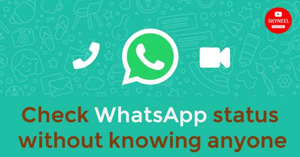 check WhatsApp status without knowing anyone